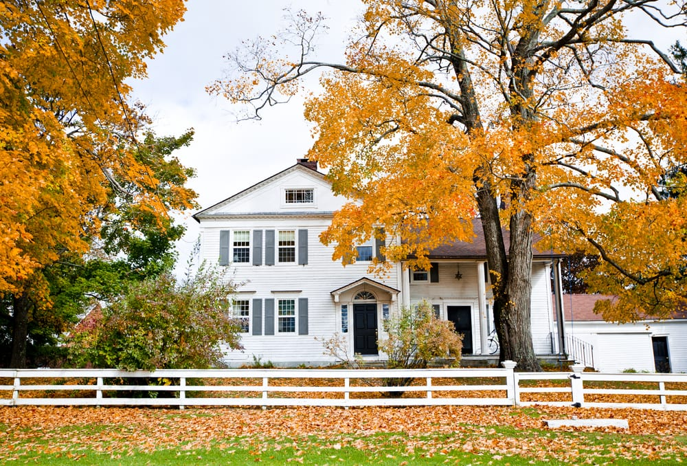 Beautiful white house in fall, yellow leaves on trees